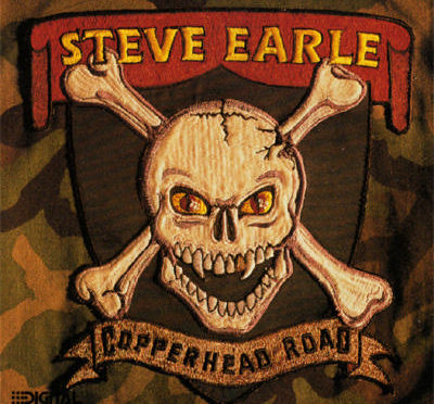 copperhead road cover - it's a skull and crossbones